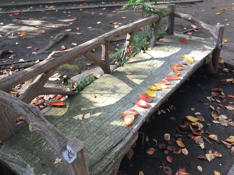 낙엽의 정렬