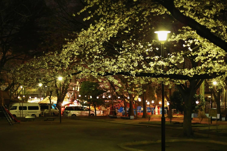 고이나리 공원