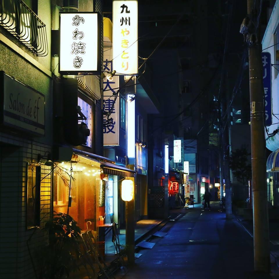 晚上的櫻台圖片