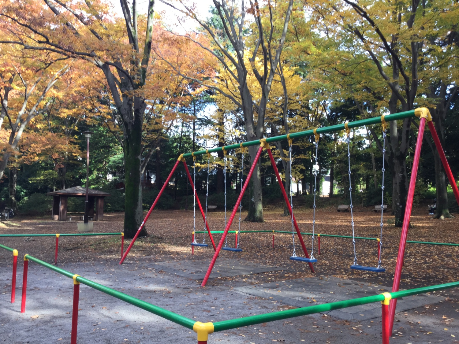 Colorful swing and colored leaves