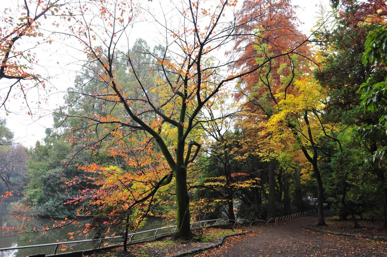 武藏关公园