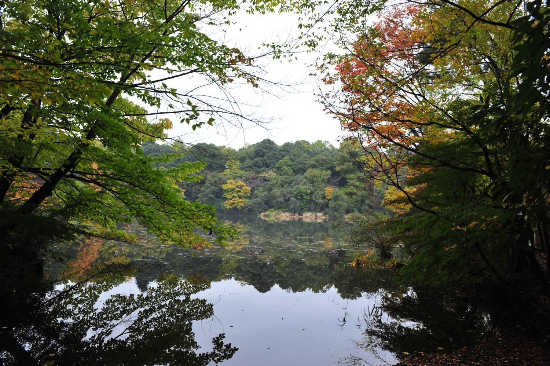 3寶貝寺池塘周邊圖片