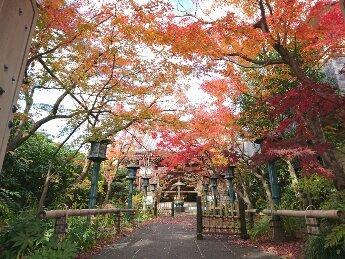 Is it Kamakura? Is it Kyoto? ? No. It is Nerima.