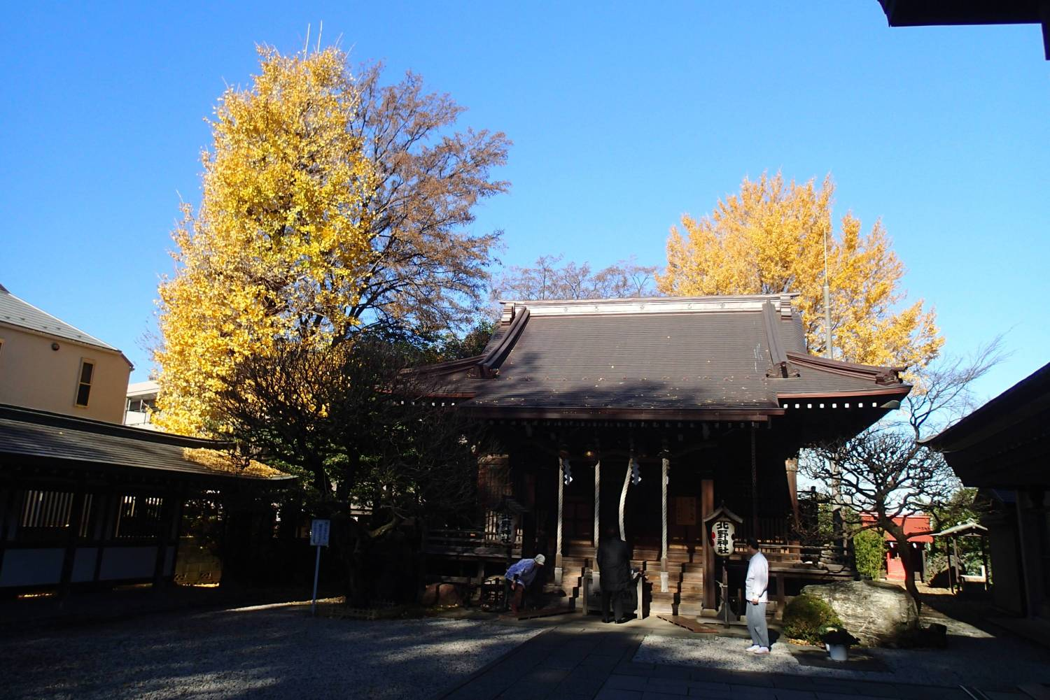 Late fall of Shinto shrine