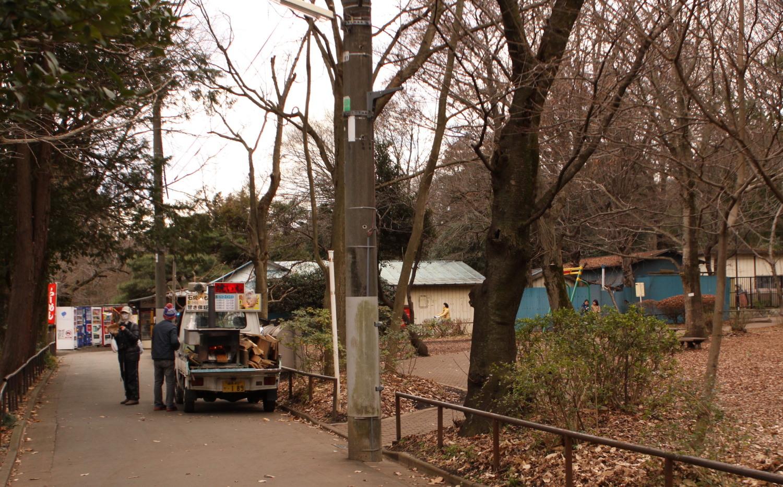 在丰岛屋前图片