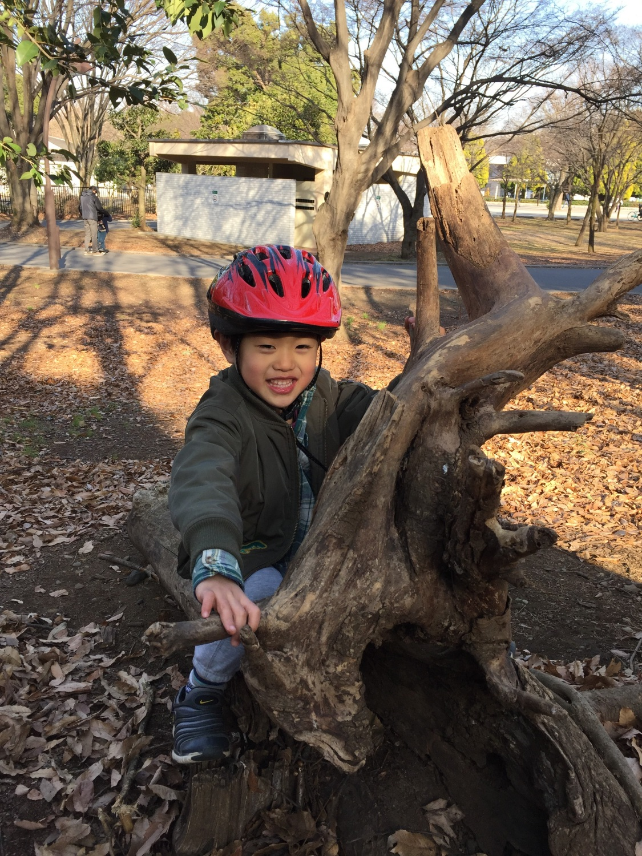 히카리가오카 공원은 자연의 장난감투성이!