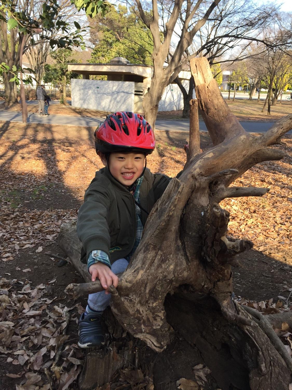 히카리가오카 공원은 자연의 장난감투성이! 이미지