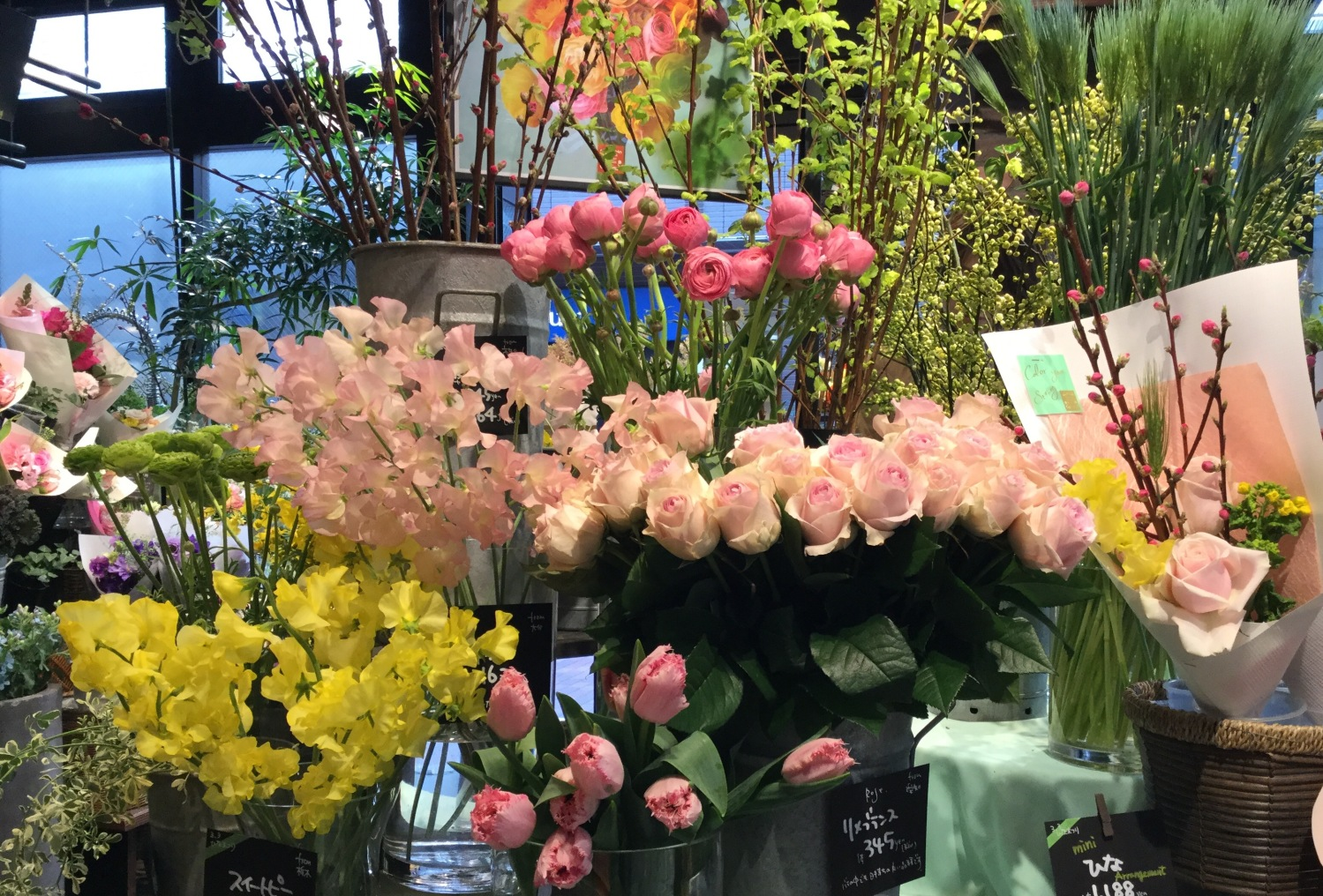 花店的春天圖片