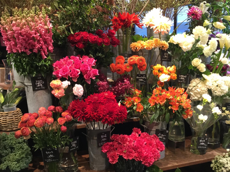 꽃가게의 봄 이미지