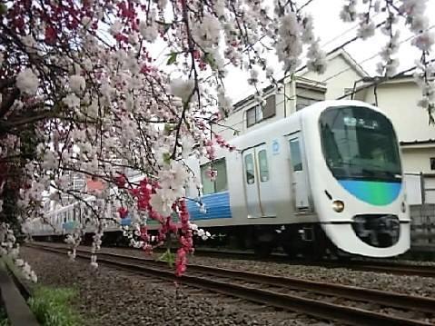 Peach and Seibu Line