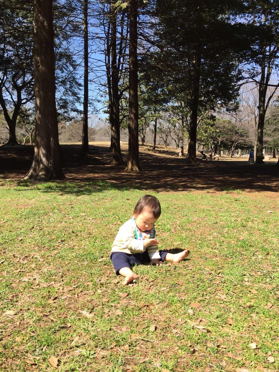 따끈따끈 히카리가오카 공원