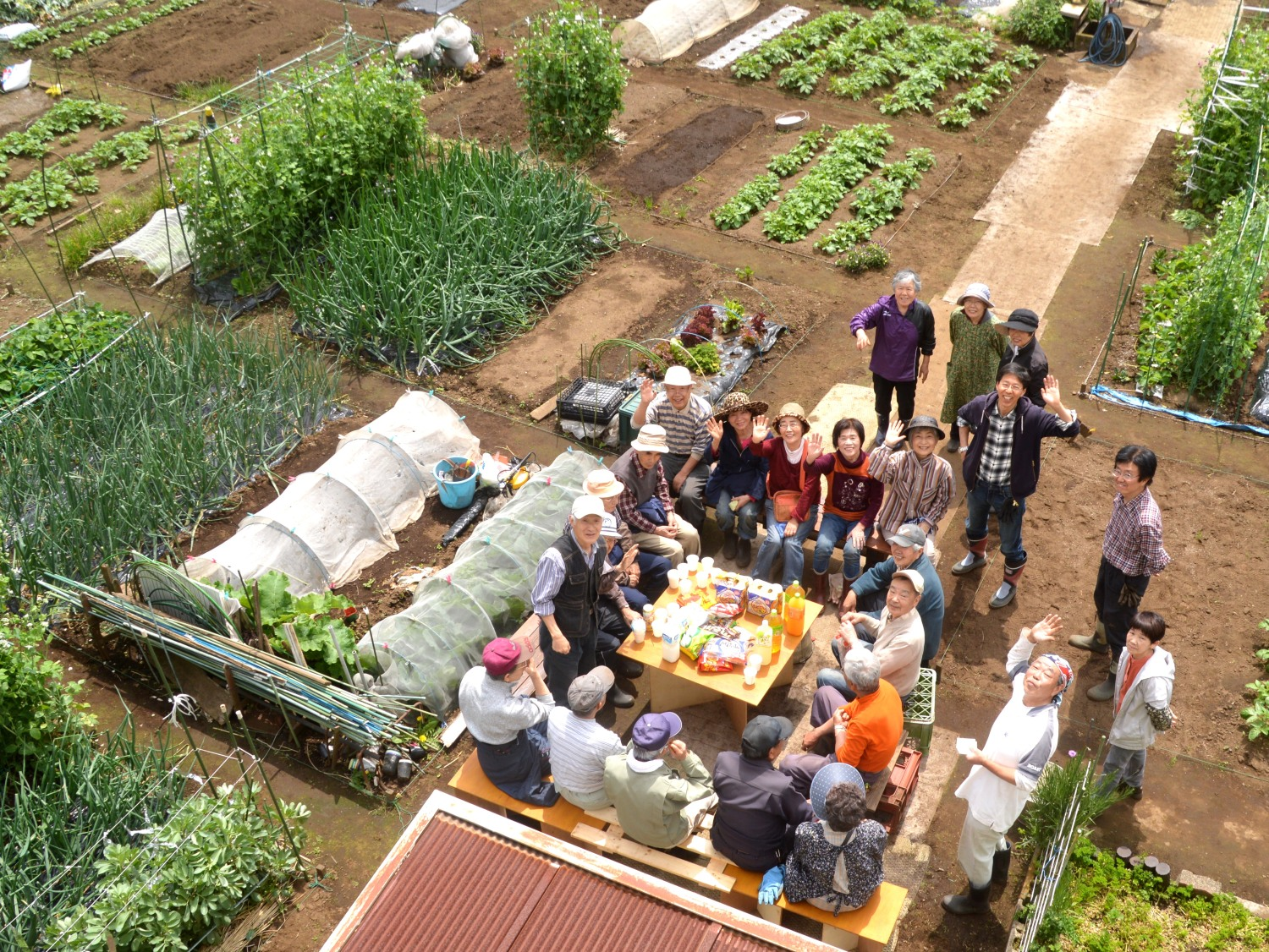 Finish spring collaboration to protect green vegetable garden