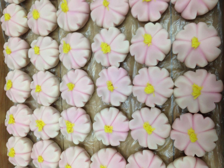 벚꽃 만개