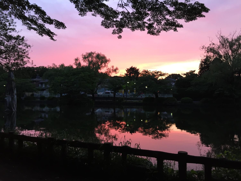 漂亮的黄昏