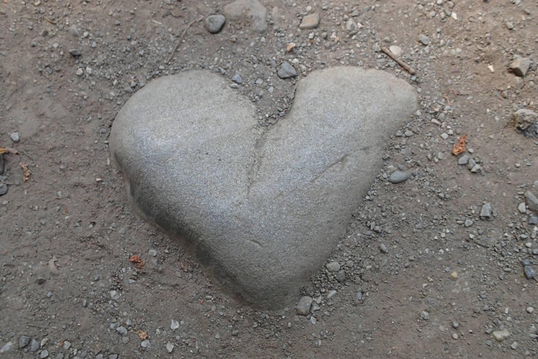 是在武藏关公园找到的心石头。