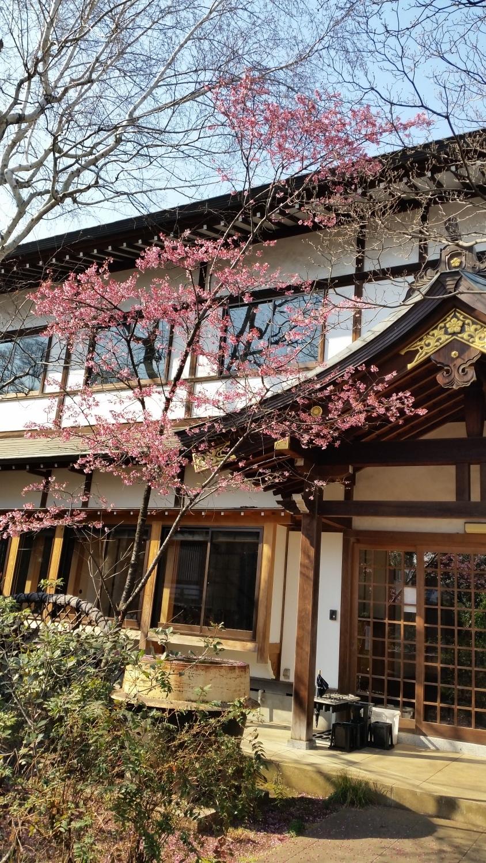 春分或者秋分为中心的一个星期的感仓库院图片