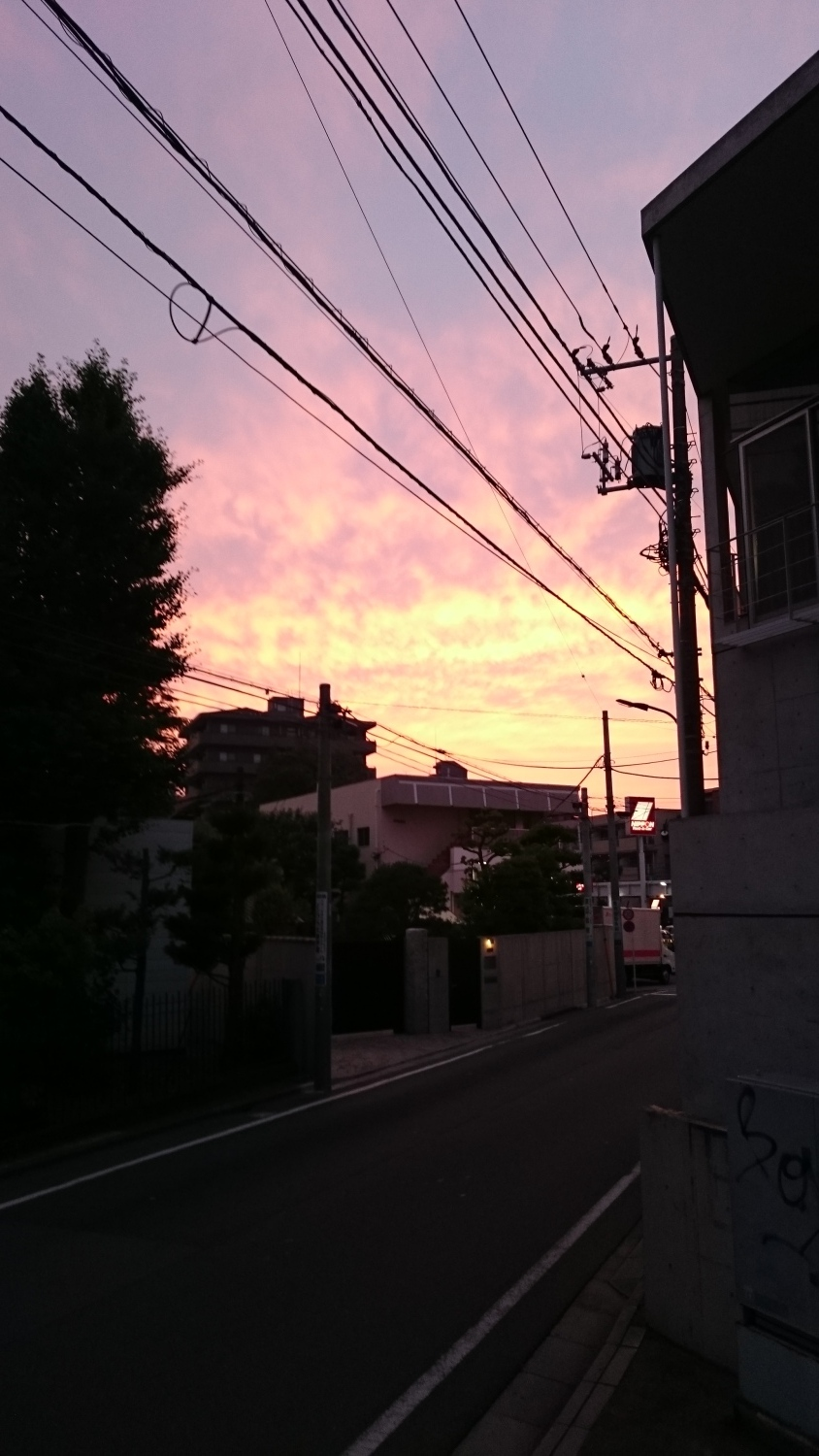 Sunset image of early summer