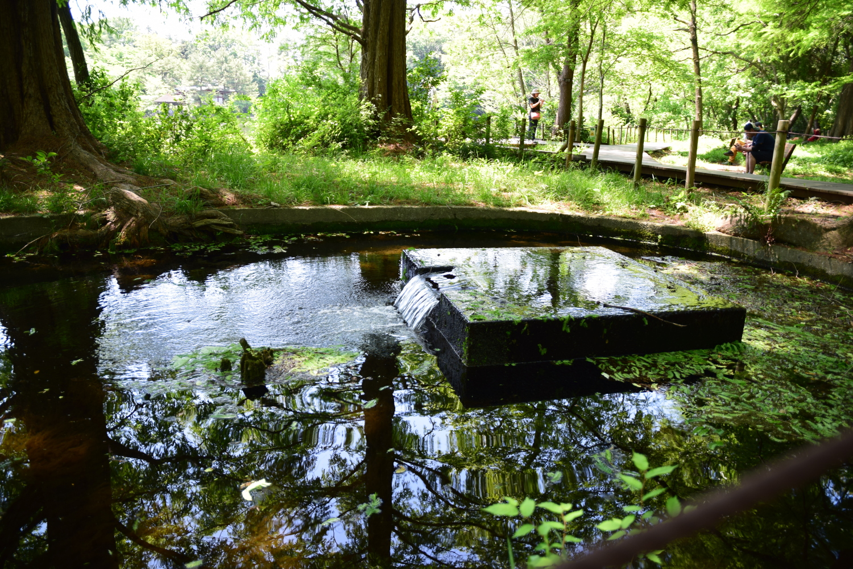 泉水的遺跡圖片