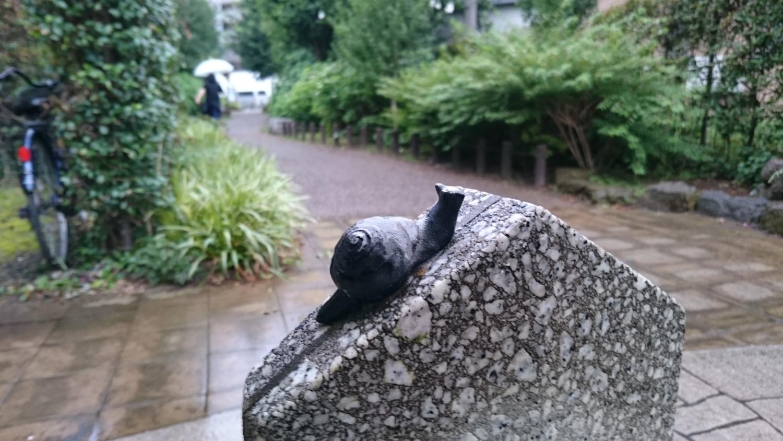 언제든지 만날 수 있는 달팽이