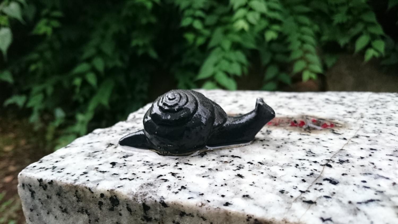 언제든지 만날 수 있는 달팽이 이미지