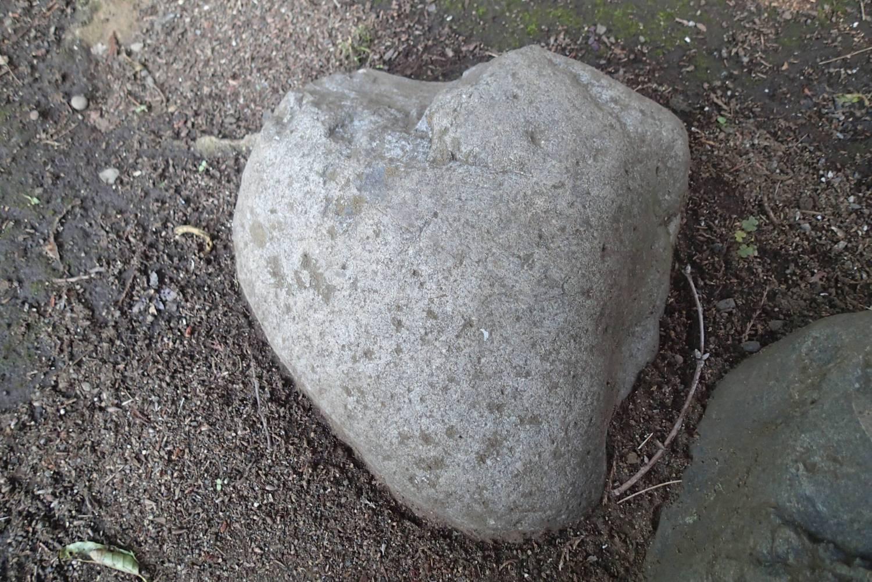 这个也是心石头吗?