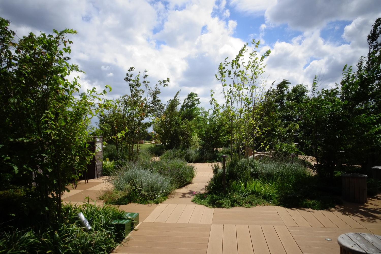 大泉学园的屋顶庭园