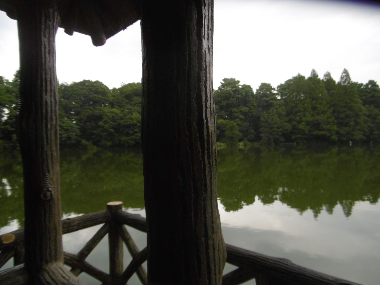 雨里面的喜欢的景点图片