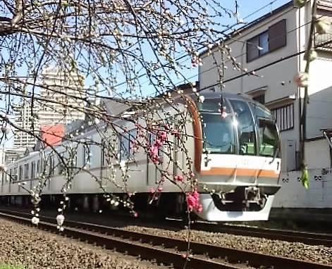 철도와 벚꽃 이미지