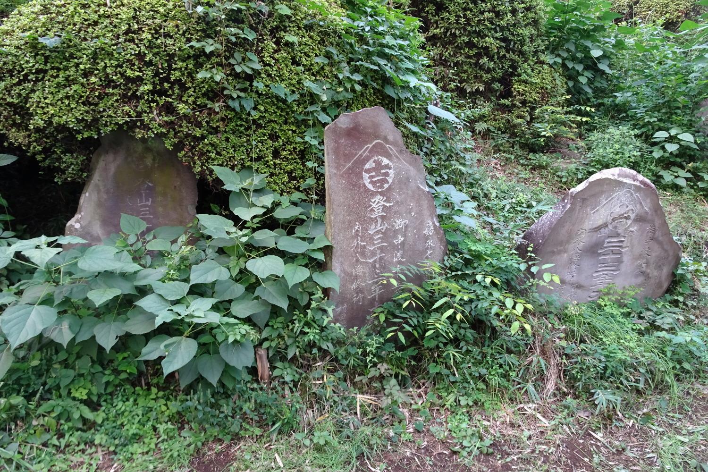 大泉町八坂神社的富士冢圖片