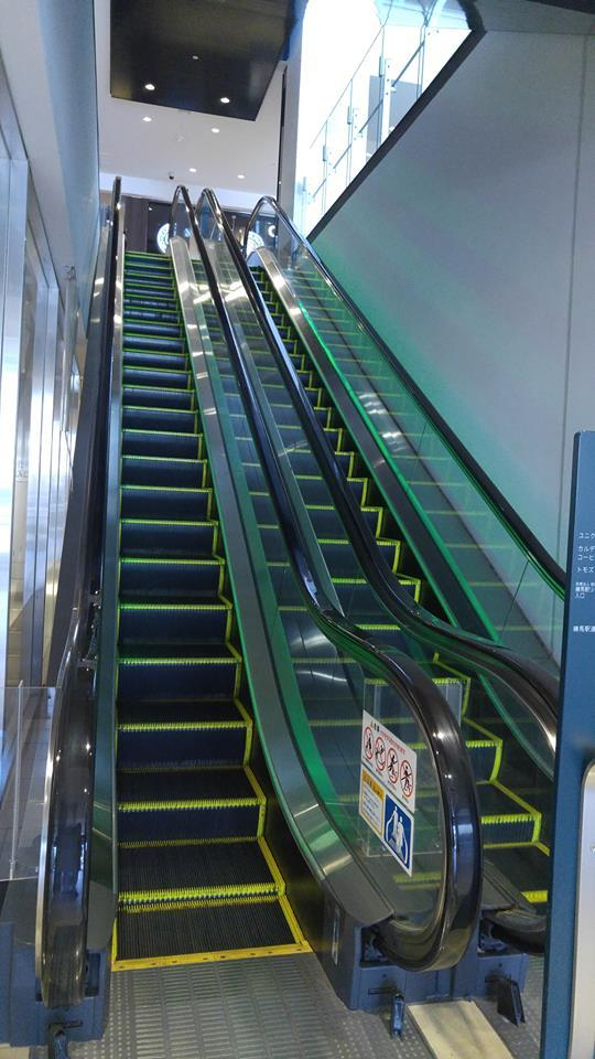 Escalator of coconeri