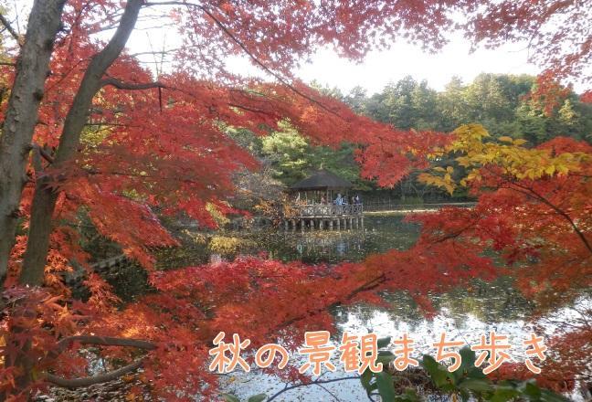 가을의 경관 거리 걸음
