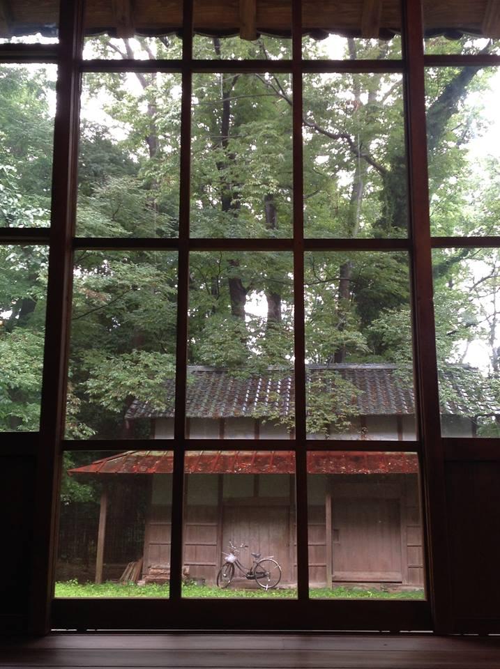 光葉櫸樹的森林的季楽堂