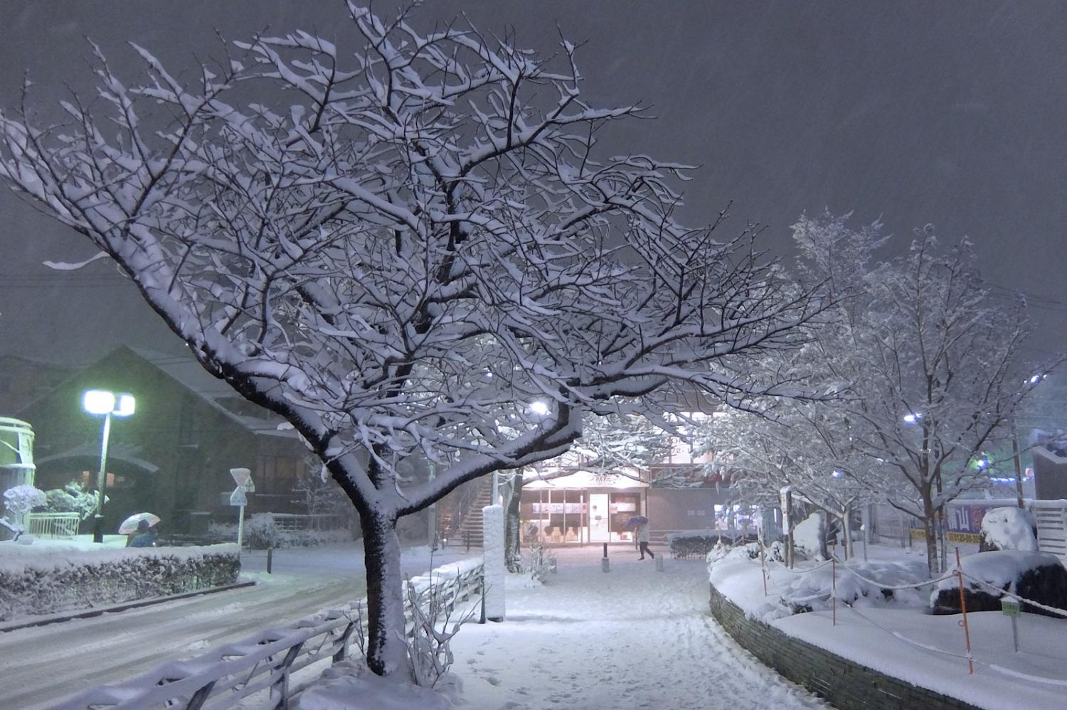 At night of heavy snow, the Nerima-Takanodai station square