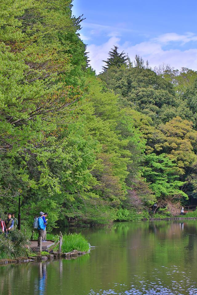 Shakujii Park three treasures Teraike