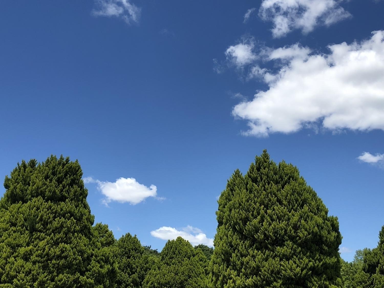 기분 좋게 갠 하늘
