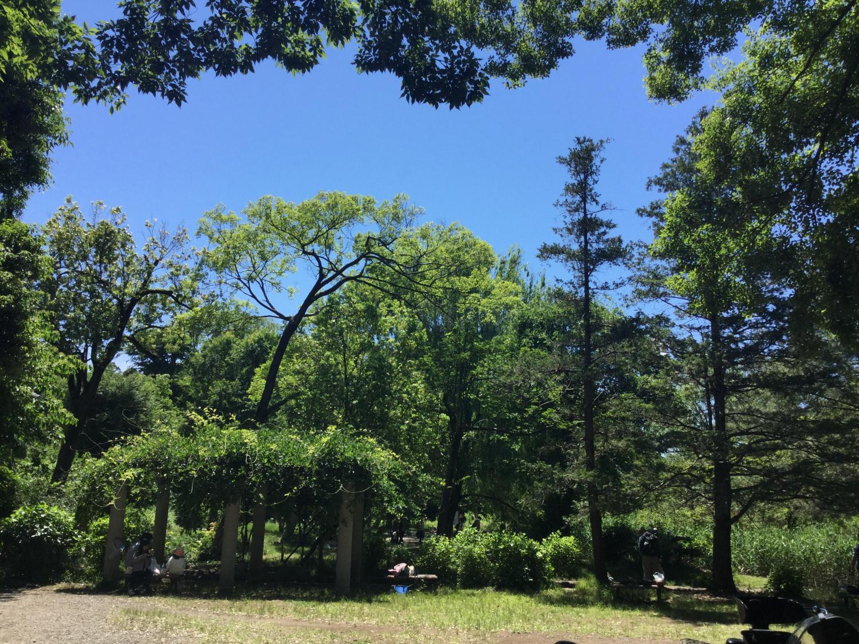 5월의 맑은 날씨의 삼보지이케 이미지