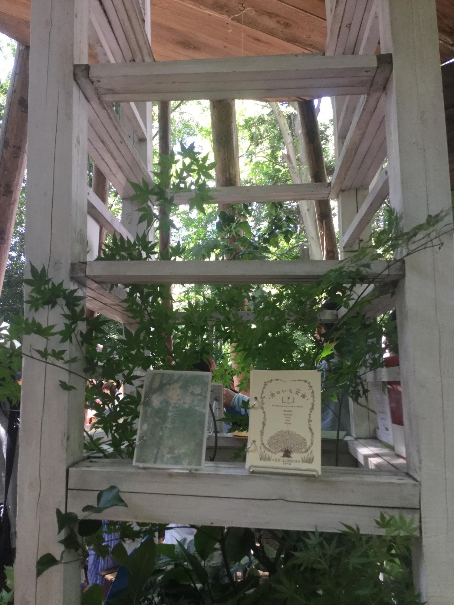 komorebino garden image