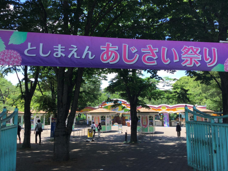 toshimaenajisai节图片