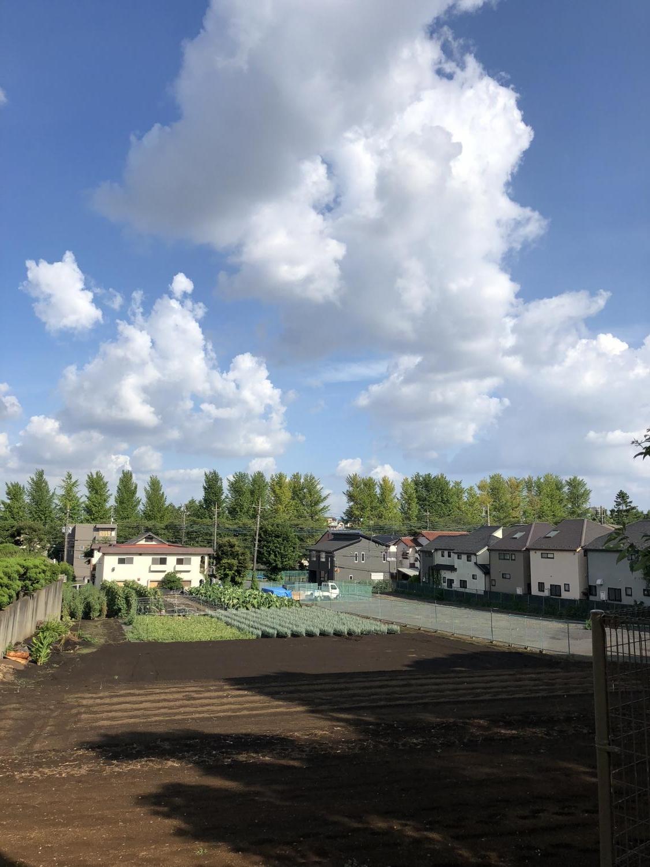 颱風1過度no夏天雲圖片