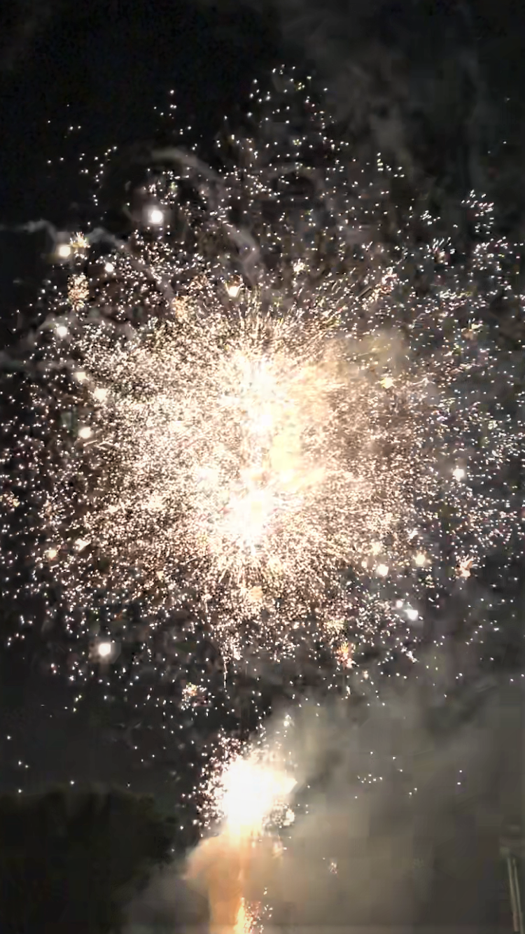 Nerima-ku fireworks Festa @ Toshimaen