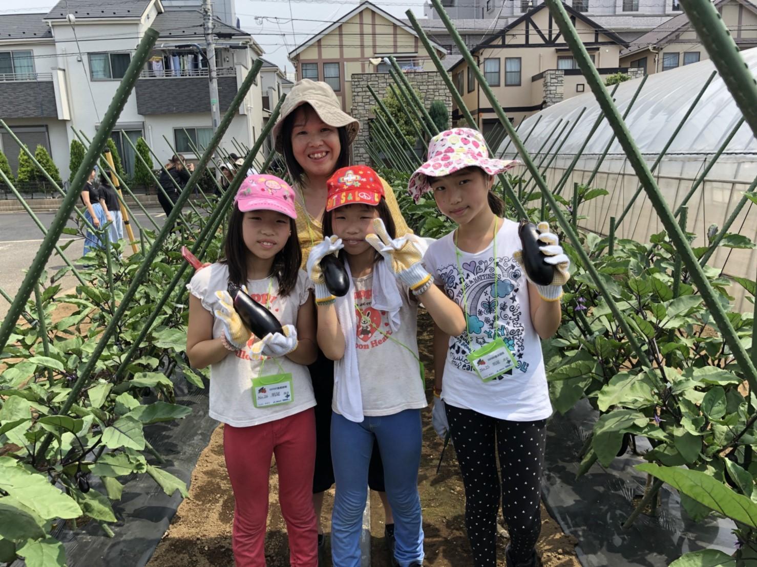 GO!GO!農業探險隊!!蔬菜收獲篇