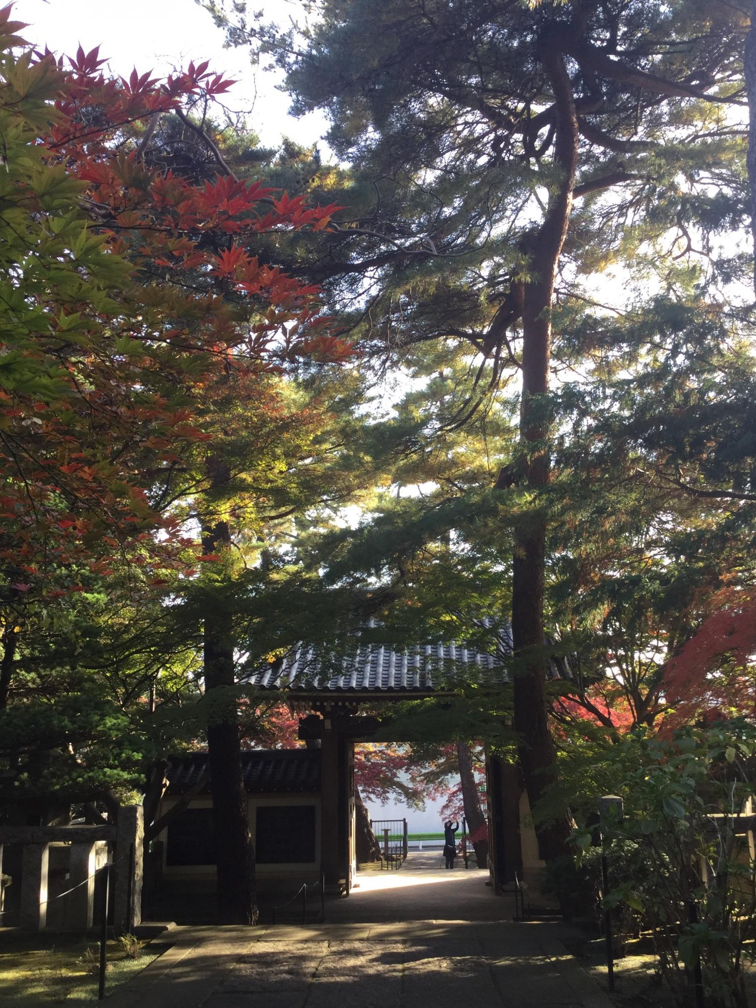 Autumn colors are beautiful! Image