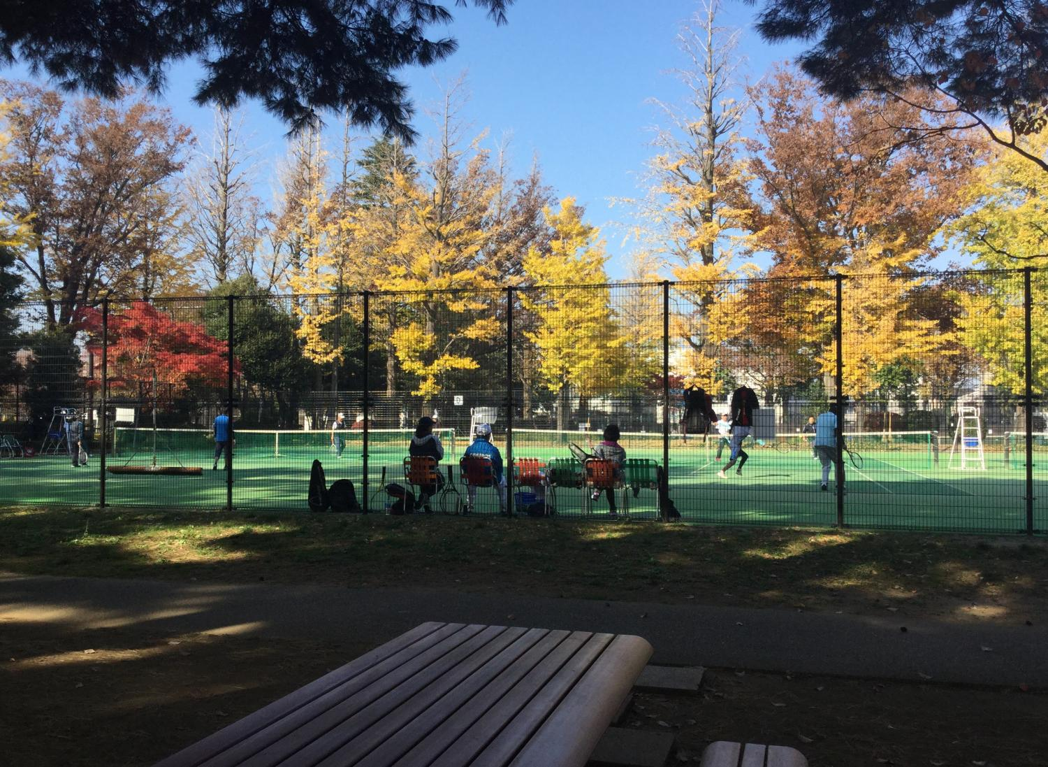 Tennis under colored leaves is the best!