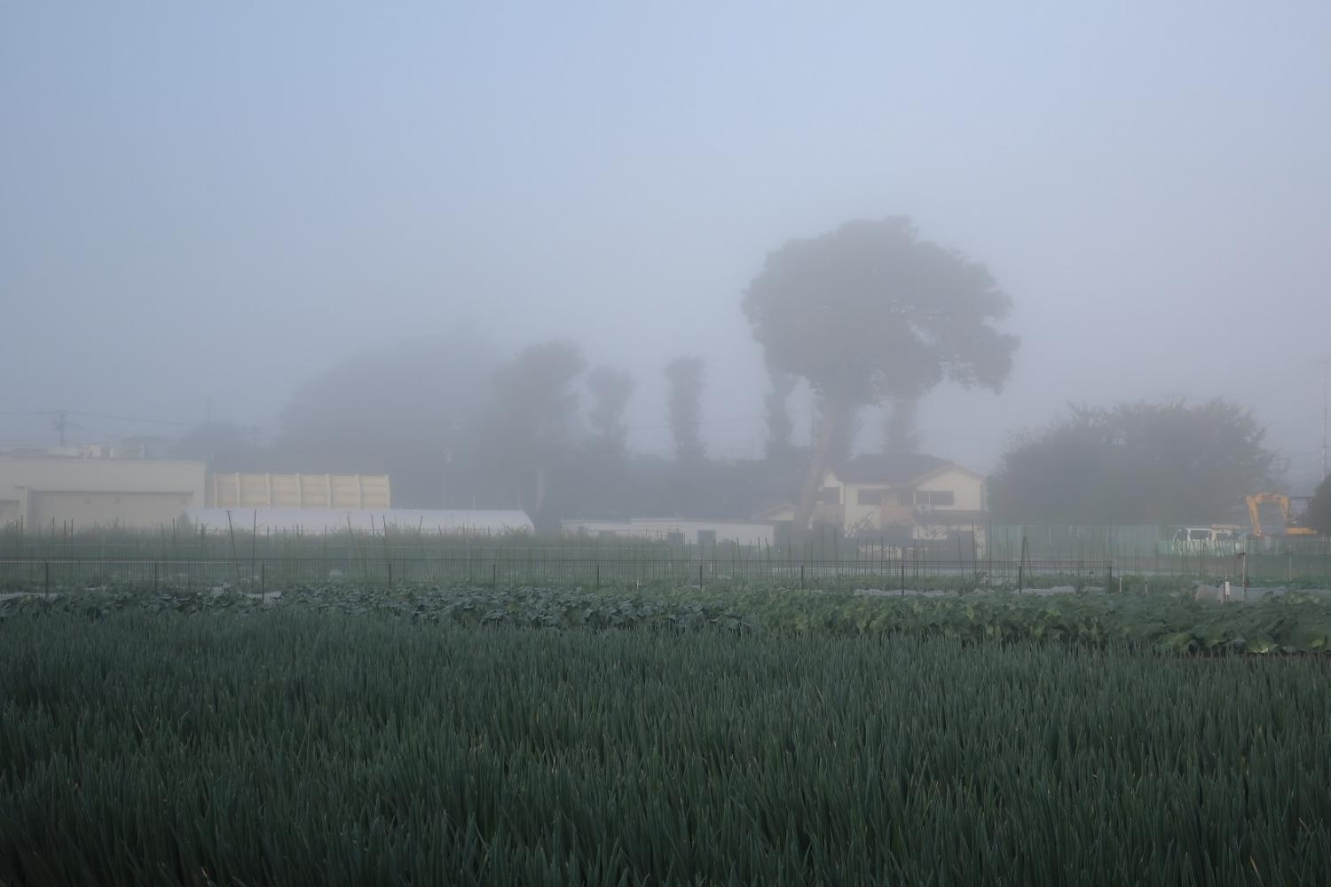 Minamioizumi that was surrounded on October 30 by dense fog