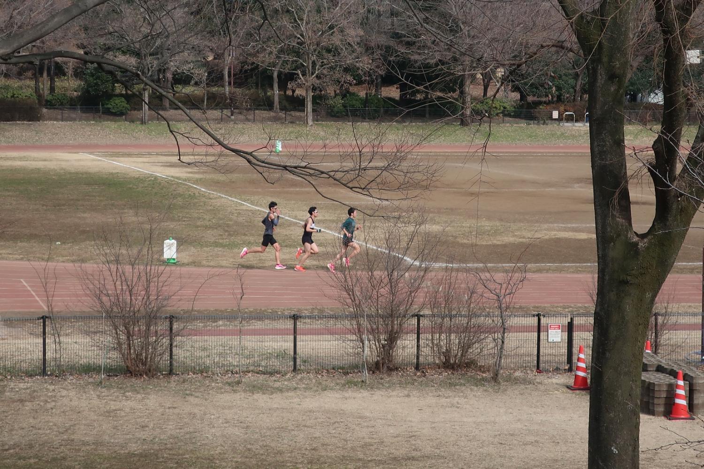 Oizumi-Chuo Park land sports stadium image