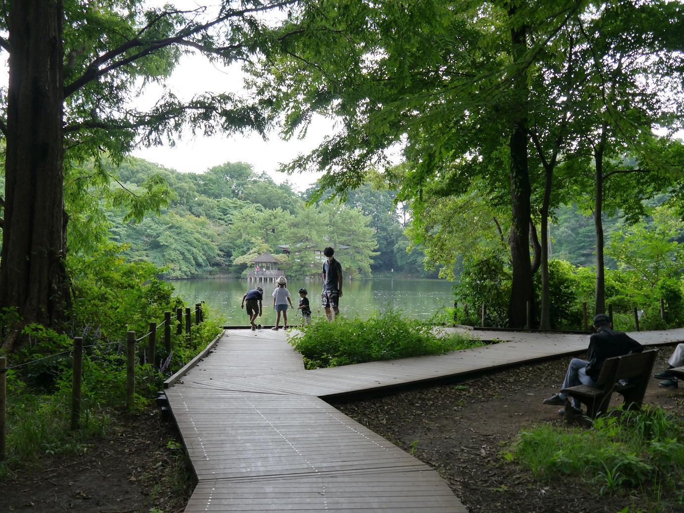 石神井公园8月下旬