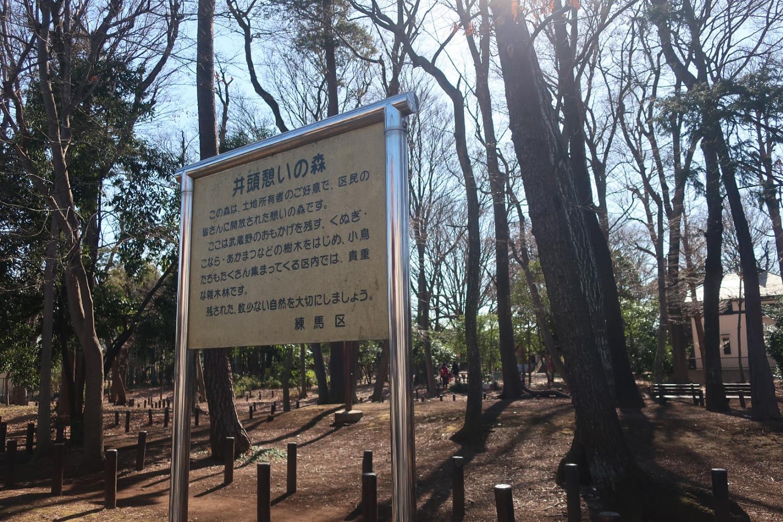 정두휴식의 숲(2월) 이미지
