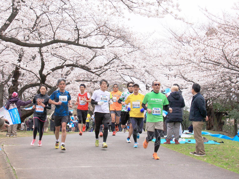 練馬 こぶし マラソン