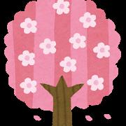 練馬光丘櫻花節2020