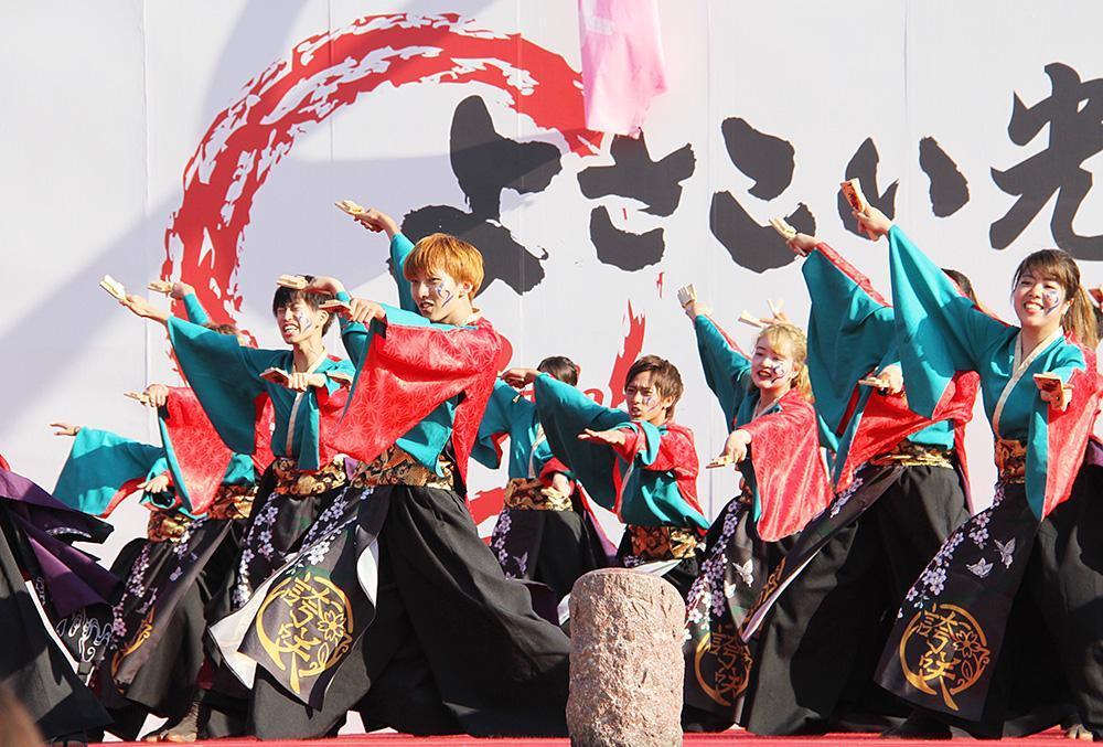 제14회 좋은 점 잉어 축제 IN 히카리가오카 공원